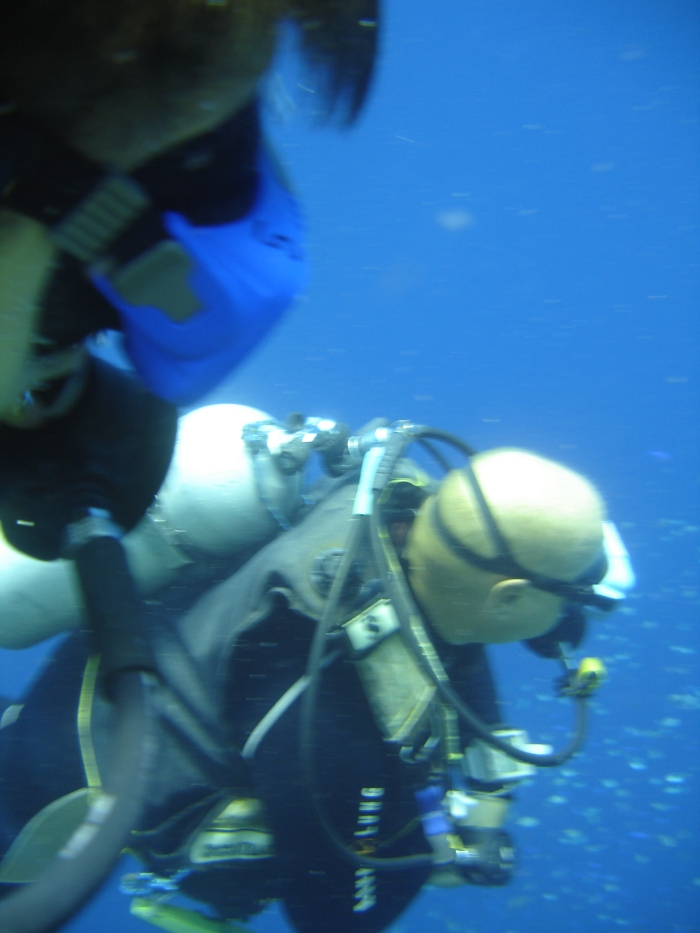 We tested for you Scuba Diving in Moalboal