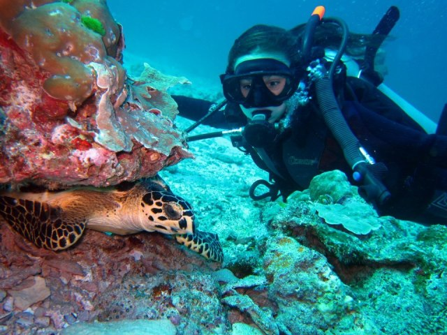 Top 10 Best Things To Do in Phuket. Scuba Diving.