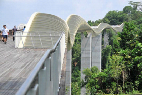 Hike in parks and natural reserves. Top 10 things to do in Singapore.