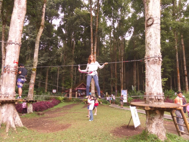 Treetop and Zipline Adventure Park, Bali.