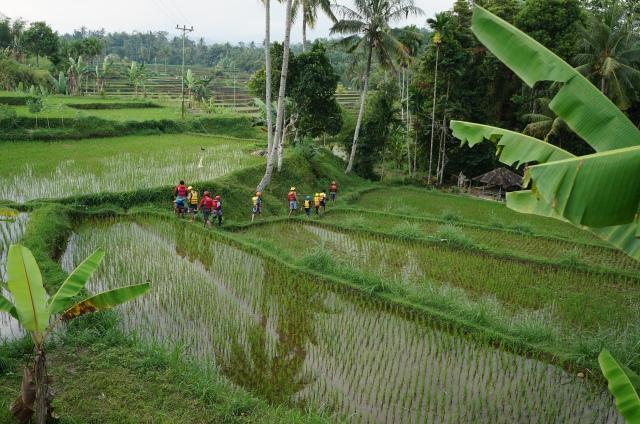 Nature Safari Tour. Things to do in Lombok.