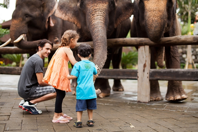 Breakfast with Elephants. Top 10 Things to Do with Kids in Bali.