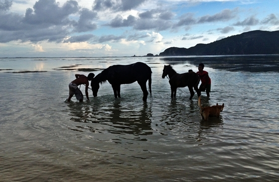 Top 10 Things to do in Lombok. Horse Riding in Lombok.